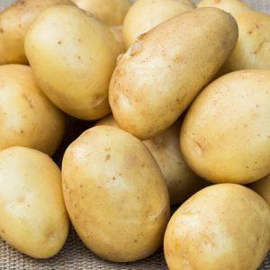 Картофель Крепыш