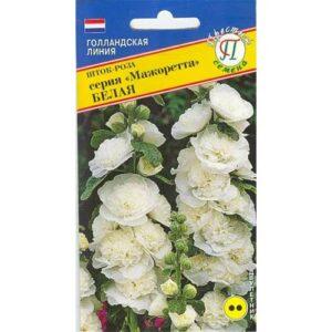 Шток-роза Мажоретта Белая